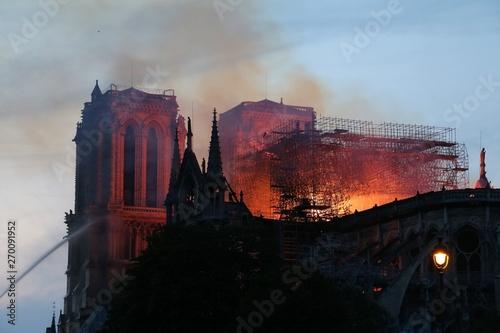 Poster de jardin Paris Cathedrale Notre Dame de Paris en feu