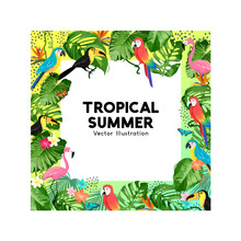 Tropical Jungle Background Border Design