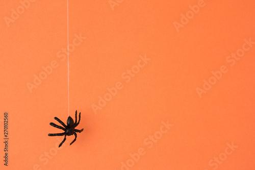 Fotografia  Halloween background concept
