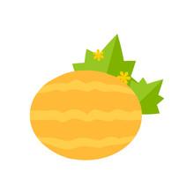 Flat Illustration Of A Melon