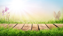A Wooden Table With A Sunny Summers Green Pasture Background
