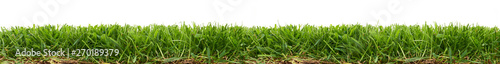 Photo Stands Grass Fresh green grass isolated against a white background