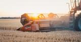 Mähdrescher erntet das Getreide im Sonnenuntergang - 270201793