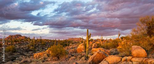 Keuken foto achterwand Cactus Sunset Image Of Browns Ranch Preserve In North Scottsdale, AZ