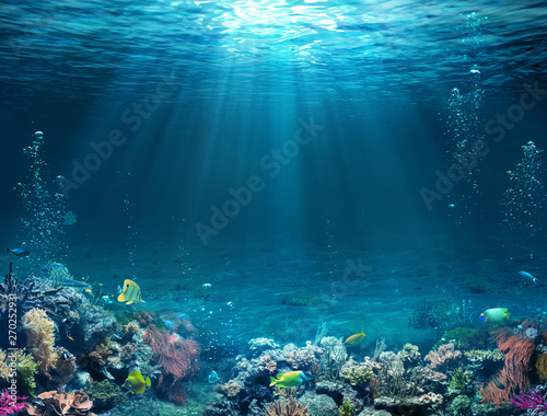 Photo sur Toile Recifs coralliens Underwater Scene - Tropical Seabed With Reef And Sunshine