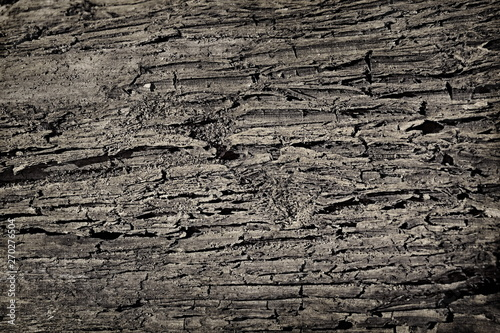 Aluminium Prints Firewood texture sand soil dirt texture background crack faults
