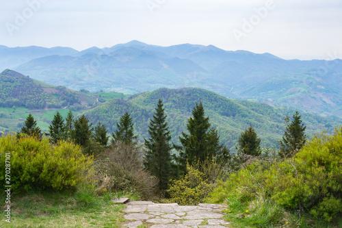 Bertiz Forest, Navarra, Spain