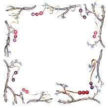 Watercolor Twig Frame