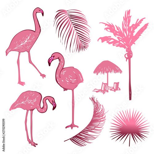 Canvas Prints Flamingo Hand drawing sketch of pink flamingo birds with leaves and palm. Exotic tropical collection isolated on the white background.
