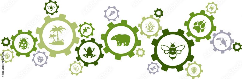 Fototapeta biodiversity icon concept – endangered species & wildlife icons, vector illustration