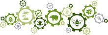 Biodiversity Icon Concept – ...