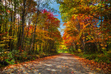 A Road In Ontario With Beautif...