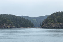 Distant Cliffs Across A Large Body Of Water Covered In Tall Green Trees