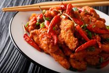 Chinese Food Chicken In Schezw...