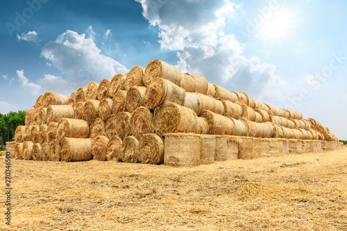 Fotomural Straw bales on farmland with blue cloudy sky