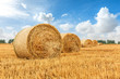 canvas print picture - Straw bales on farmland with blue cloudy sky