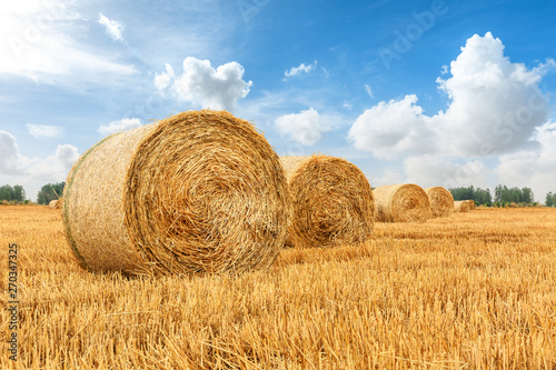 Straw bales on farmland with blue cloudy sky Fototapeta