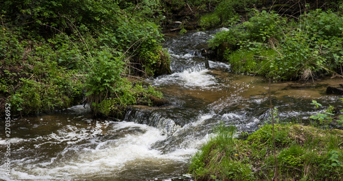 Foto op Aluminium Bos rivier Mountain stream, River deep in mountain forest, Mountain creek cascade with fresh green moss on the stones