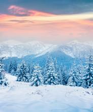 Beautiful Winter Sunrise In The Carpathian Mountains.