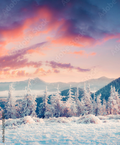 Photo  Colorful winter sunrise in the misty mountans.