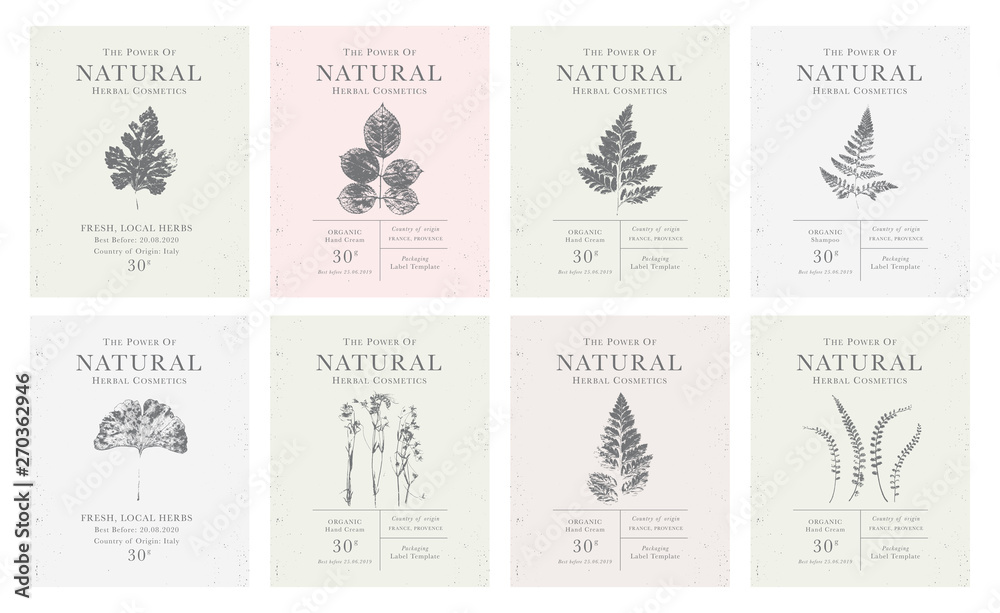 Fototapety, obrazy: Set of customizable vintage label of Natural organic herbal products.