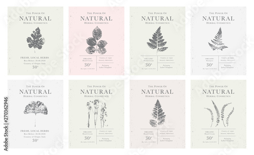 Fotografía  Set of customizable vintage label of Natural organic herbal products