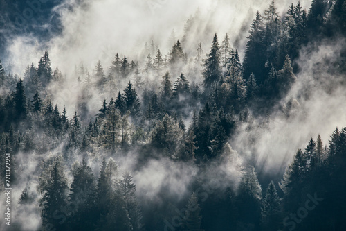 In de dag Bleke violet Dense morning fog in alpine landscape