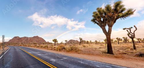Obraz Dessert road with Joshua trees and fantastic landscape around. California, USA. - fototapety do salonu