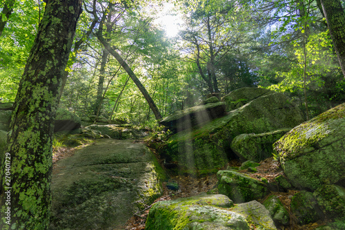 Photo A hiking trail at Purgatory Chasm State Reservation in Sutton Massachusetts