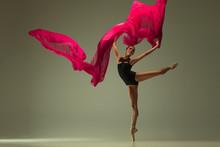 Graceful Ballet Dancer Or Clas...