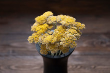 Yellow Yarrow In Black Vase On...