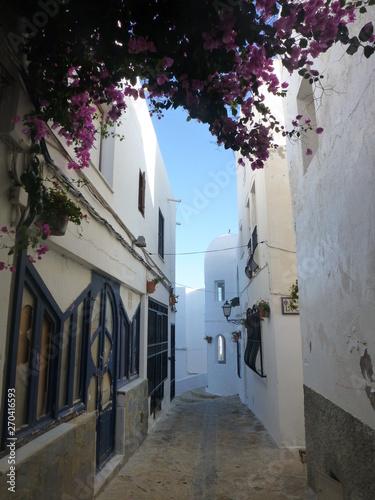 Mojacar, beautiful white town of Almeria. Andalucia,Spain