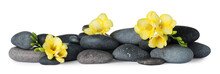 Pile Of Spa Stones And Freesia Flowers On White Background