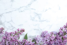 Blossoming Lilac Flowers On Ma...