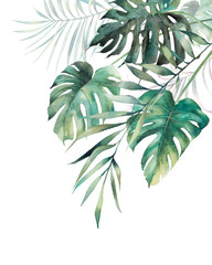 Fototapeta Do biura Watercolor tropical leaves poster. Hand painted exotic monstera and palm green branches composition on white background. Summer plants illustration