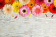 Leinwandbild Motiv Beautiful bright gerbera flowers on wooden background, top view. Space for text