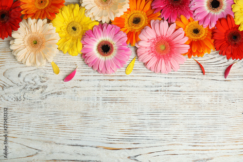 Fototapeta Beautiful bright gerbera flowers on wooden background, top view