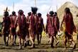 Leinwanddruck Bild - dani people during tribe festival in wamena-baliem valley-papuasia-indonesia