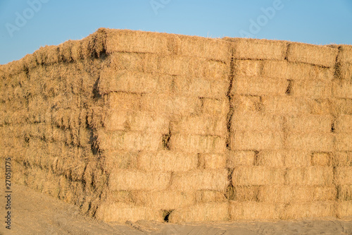 Massive stack of dried hay bails Wallpaper Mural