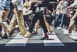 Fototapeta Zwierzęta - 横断歩道を渡る人々