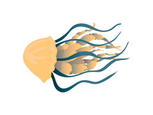 Yellow Jellyfish With Thick Tentacles Close-up. Vector Illustration On White Background.
