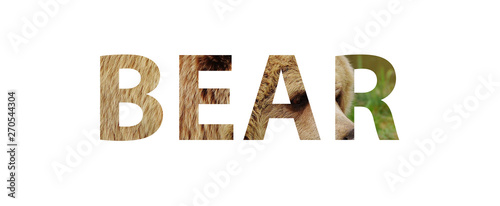 Photo The word BEAR with a photo of bear skin inside the letters