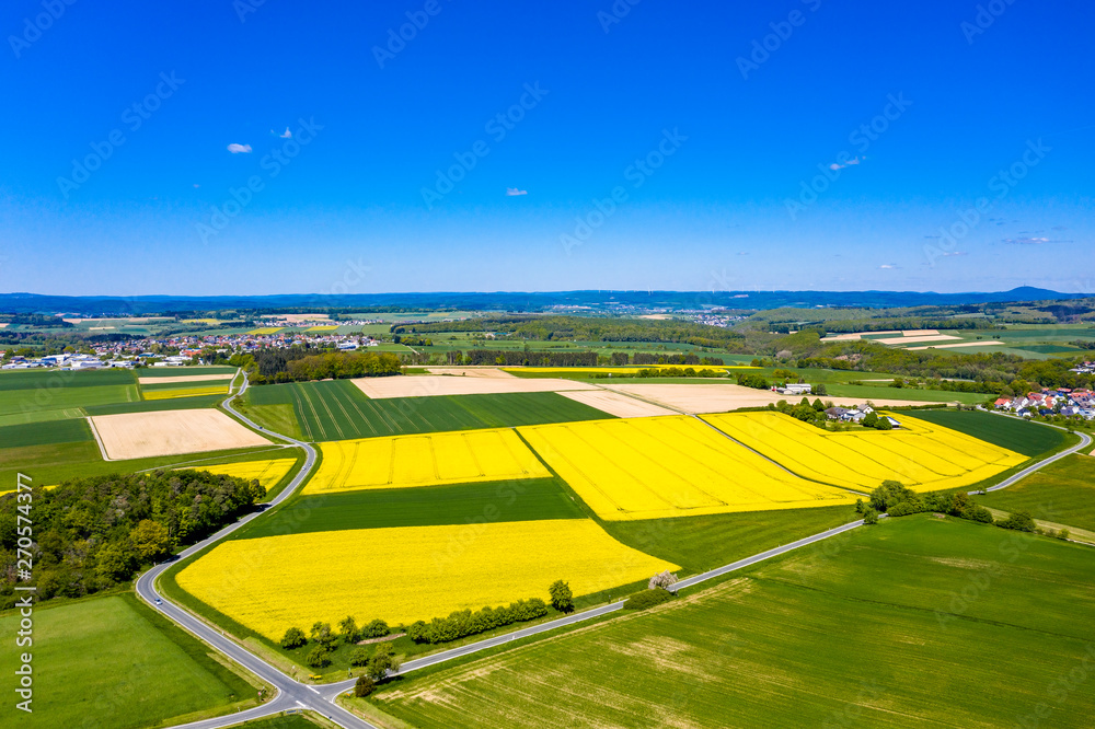 Fototapeta Aerial view, agriculture with cereal fields and rapeseed cultivation, Usingen, Schwalbach, Hochtaunuskreis, Hesse, Germany