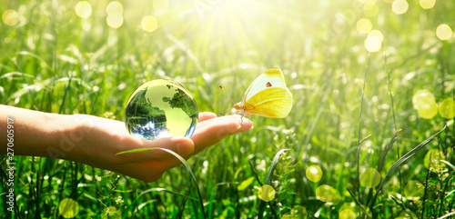 Cadres-photo bureau Pistache Earth glass globe and butterfly in human hand on green grass background. Saving environment concept.