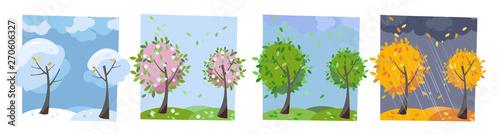 Fotografie, Tablou  Four seasons landscape
