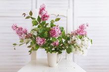Freshly Picked Bouquet Of Lilacs