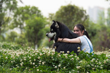 Young Asian Woman With Her Dog...