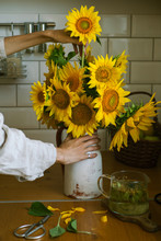 Girl Collects A Bouquet Of Sunflowers In The Kitchen