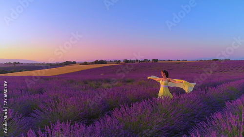 Fototapeta AERIAL: Carefree woman outstretches her arms while walking in fields of lavender obraz na płótnie