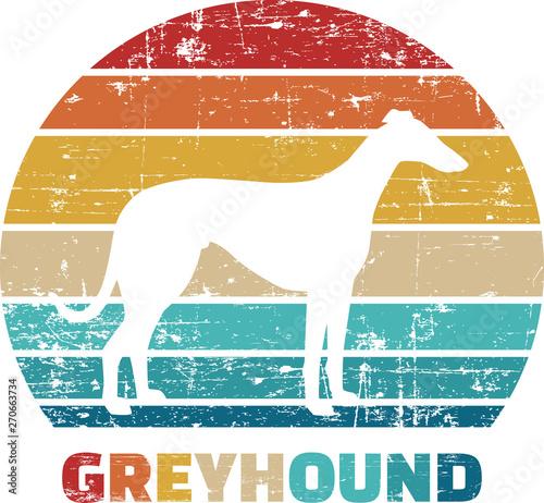 Greyhound vintage retro Fototapet